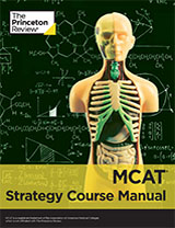 Strategy Manualbook cover
